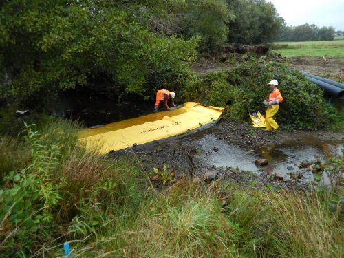 AMO environnementale pour RTE sur le projet «Filet de Sécurité» en Bretagne