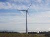 Projets éoliens et biodiversité