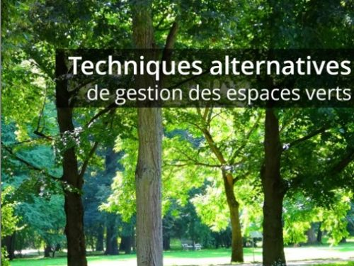 Mise à jour du guide des techniques alternatives de l'UNEP