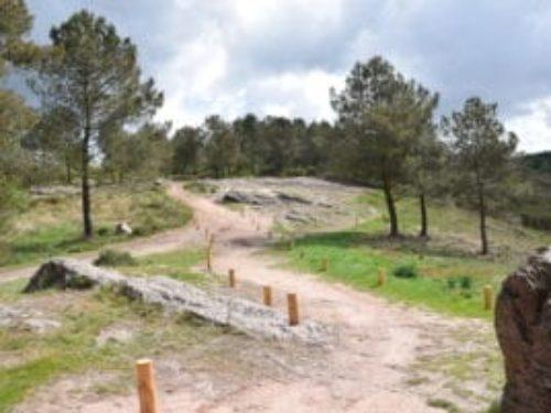 Dervenn sur les terres mythiques de Brocéliande pour protéger les landes.