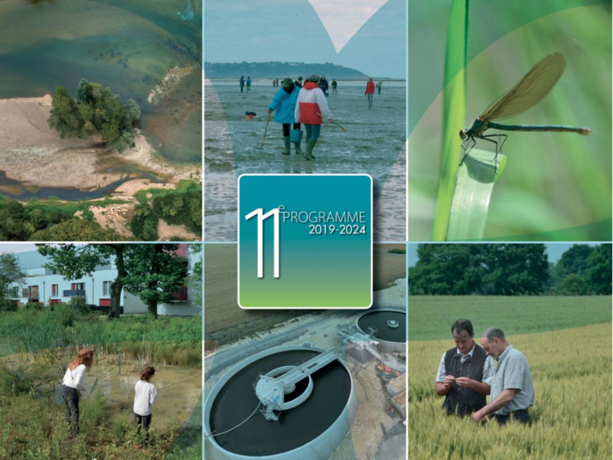 Que retenir du 11e programme pluriannuel de l'agence de l'eau Loire-Bretagne ?