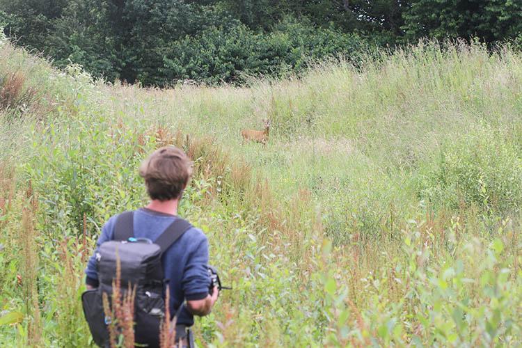 Dervenn sur le terrain : diagnostic de la faune et la flore. L'objectif : valoriser la biodiversité.