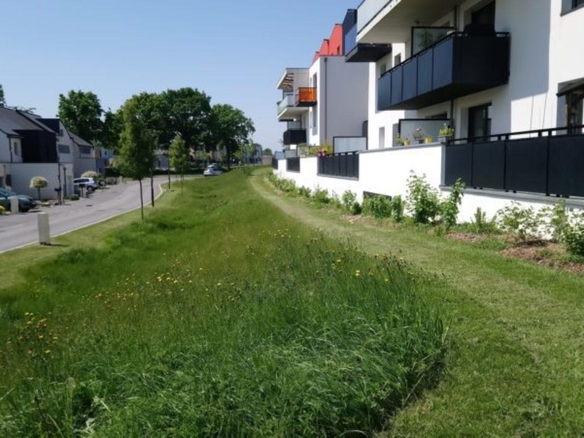 L'écologie dans l'urbanisme : une opportunité !