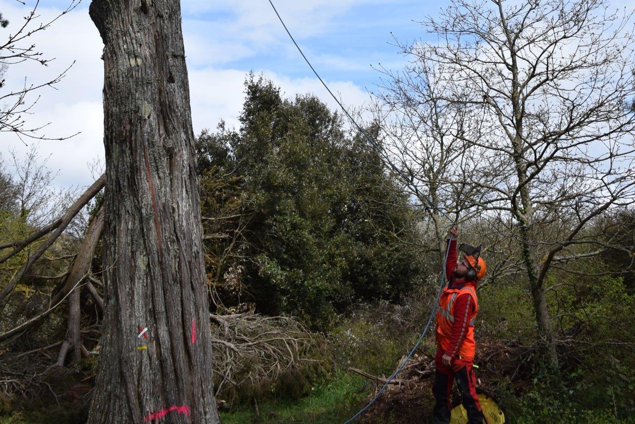 Préserver et valoriser les milieux naturels dans le Morbihan
