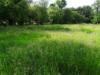 L'équivalence écologique appliquée aux zones humides