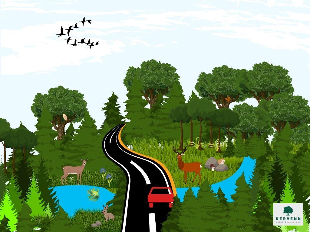 Continuités écologiques
