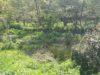 Travaux de restauration et d'entretien de rivières, Communauté de Communes Granville Terre et Mer